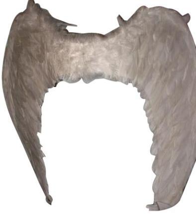 Engelsflügel weiß 50 breit x 35 cm hoch